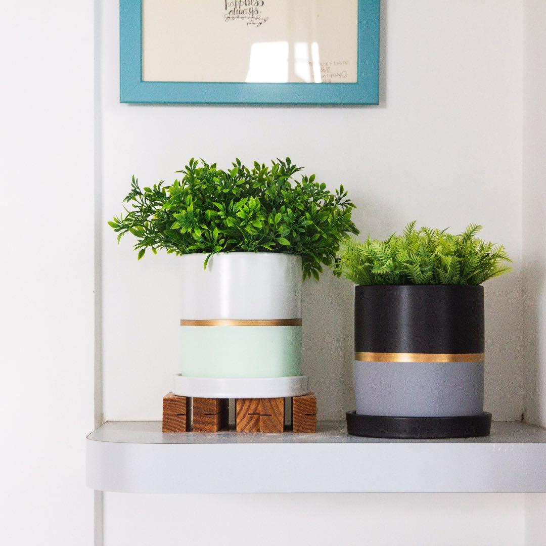 [instocks] Dual Colour Gold Planter
