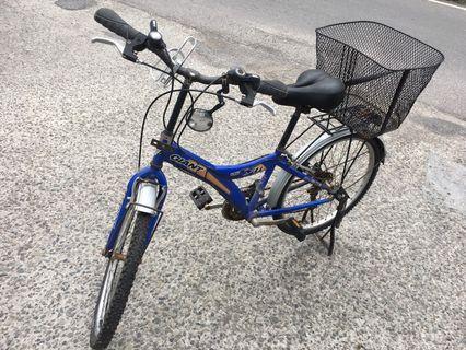 捷安特 變速腳踏車