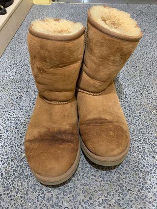 正品經典Ugg 雪靴 chestnut