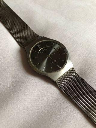 Skagen Watch (Men)