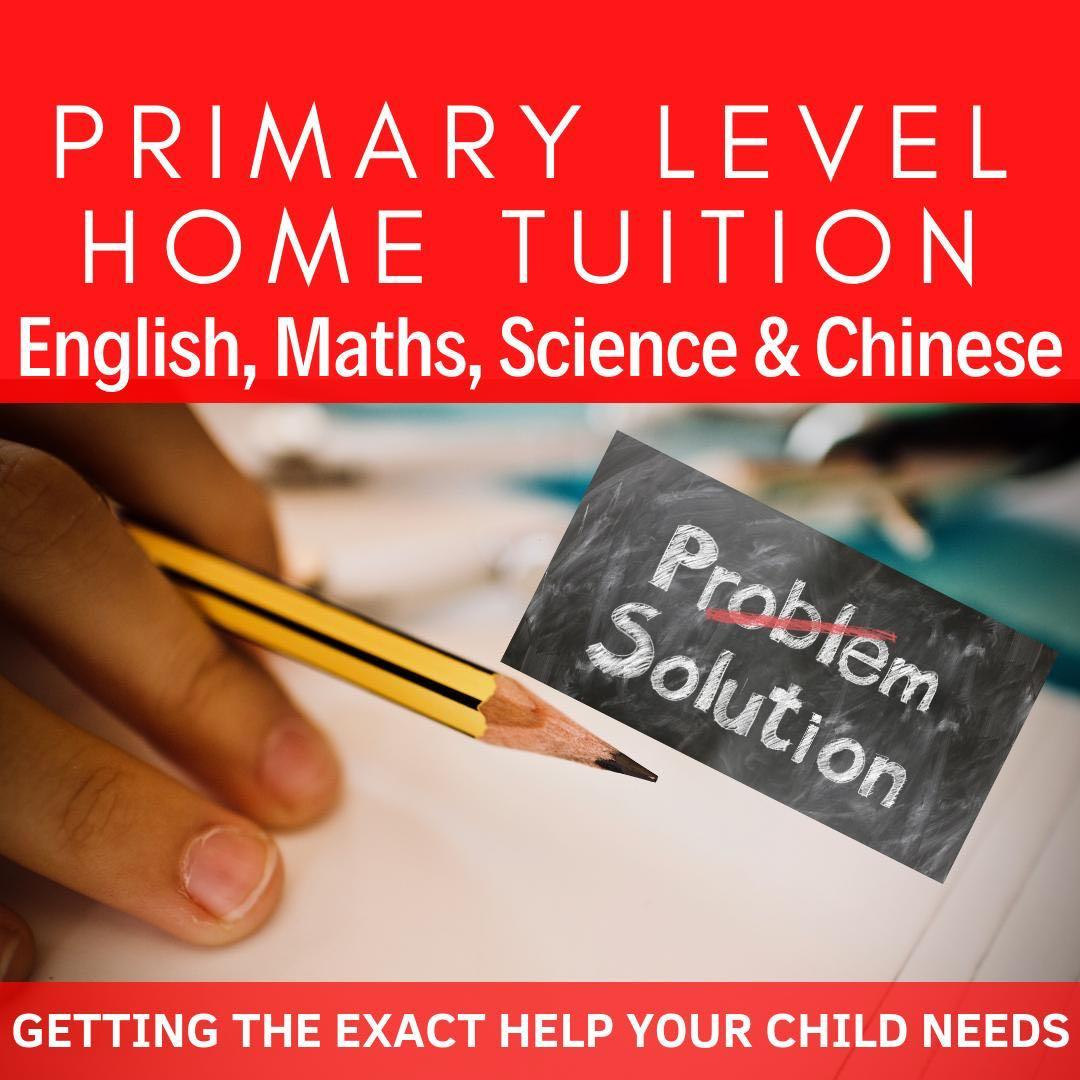 Primary School Home Tutor | English Maths Mathematics Science Higher Chinese Art | Looking for PSLE Home Tuition Teacher |  Home Tuition Primary |  Full Time Private Tutor | Tuition Lesson | MOE Teacher | Tutor needed | Private Tuition for Primary | AEIS