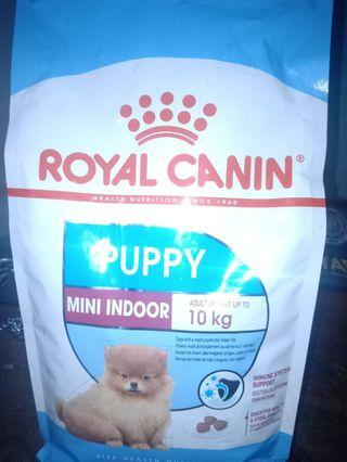 Makanan anjing puppy mini indoor