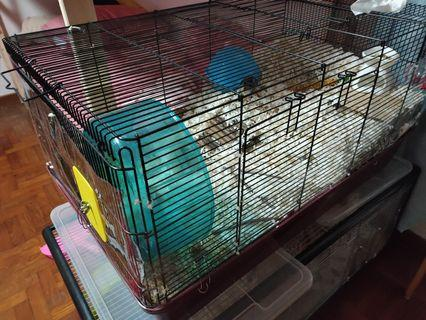 Alaska cage