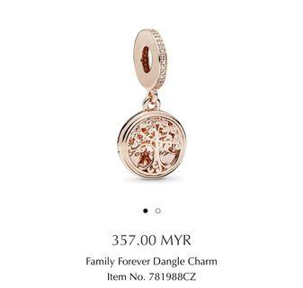 Authentic NEW Pandora Charm from Perth outlet
