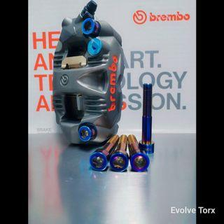 🔩🔐Customised Front Caliper Bolts for Honda/Triumph/Ducati/MV Agusta/Kawasaki