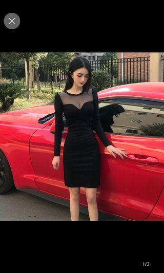 Mesh net Bodycon long sleeve dress