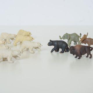 迷你桌上動物