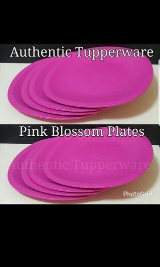 Authentic Tupperware  Pink Blossom Plates (4) 26.4cm (L) × 26.4cm (W) 《Retail Price S$28.00/Set》