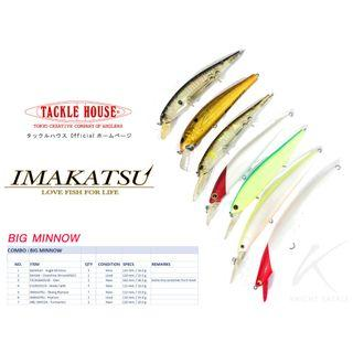 S$ 8.40 for a new Japanese lure? (Sell as set).