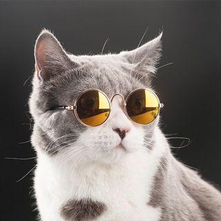 寵物帥氣造型墨鏡