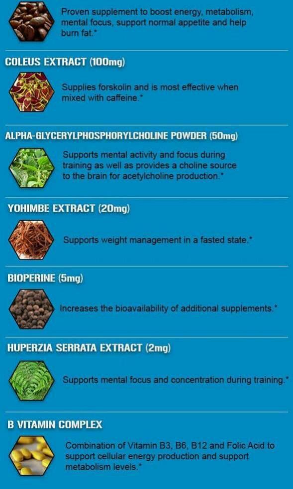 Preorder] EVLution Nutrition, Trans4orm