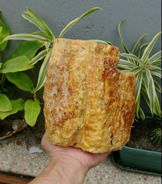 天然卡樹皮玫瑰花苞紋香琥珀超大顆原礦擺件/100%純天然無加工過,燃燒香味十足,重約1640公克,珍藏品出清