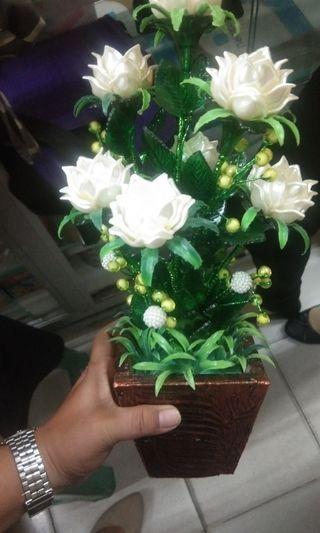 bunga aklirik