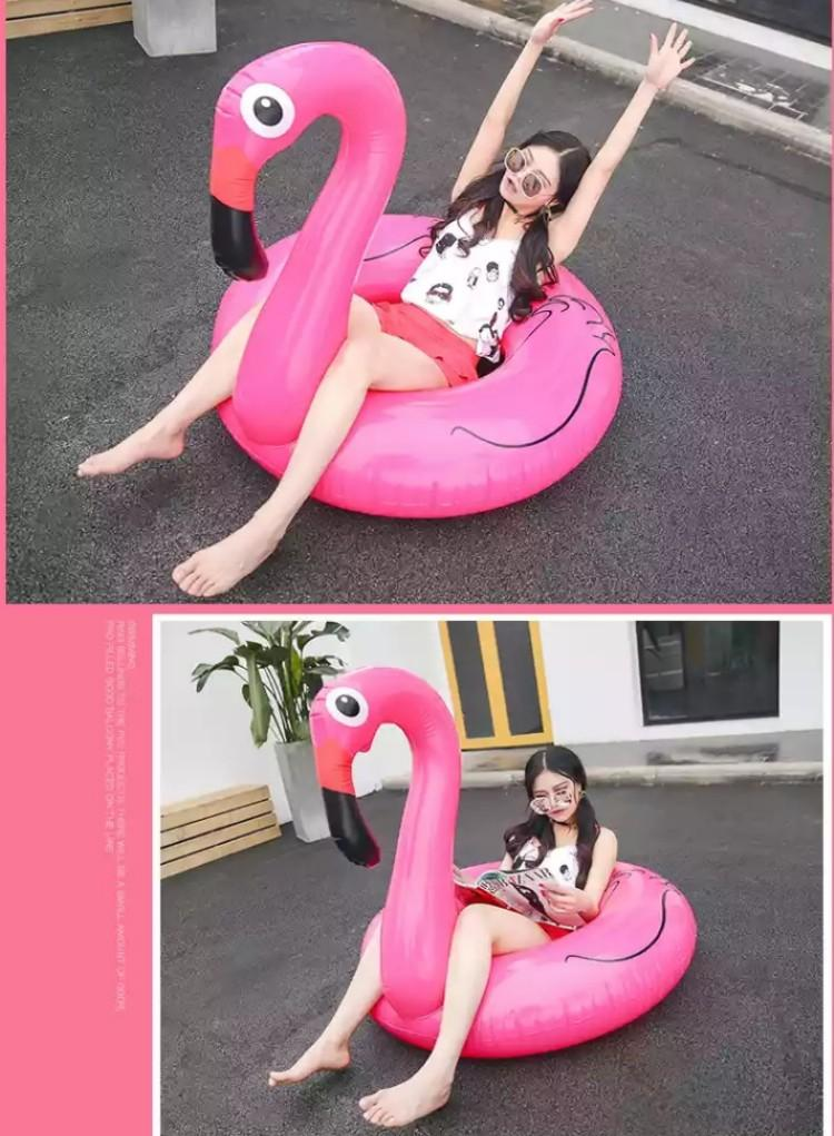 Flamingo float adult
