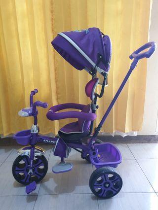 Sepeda Stroller ATLANTIS - Dark Purple