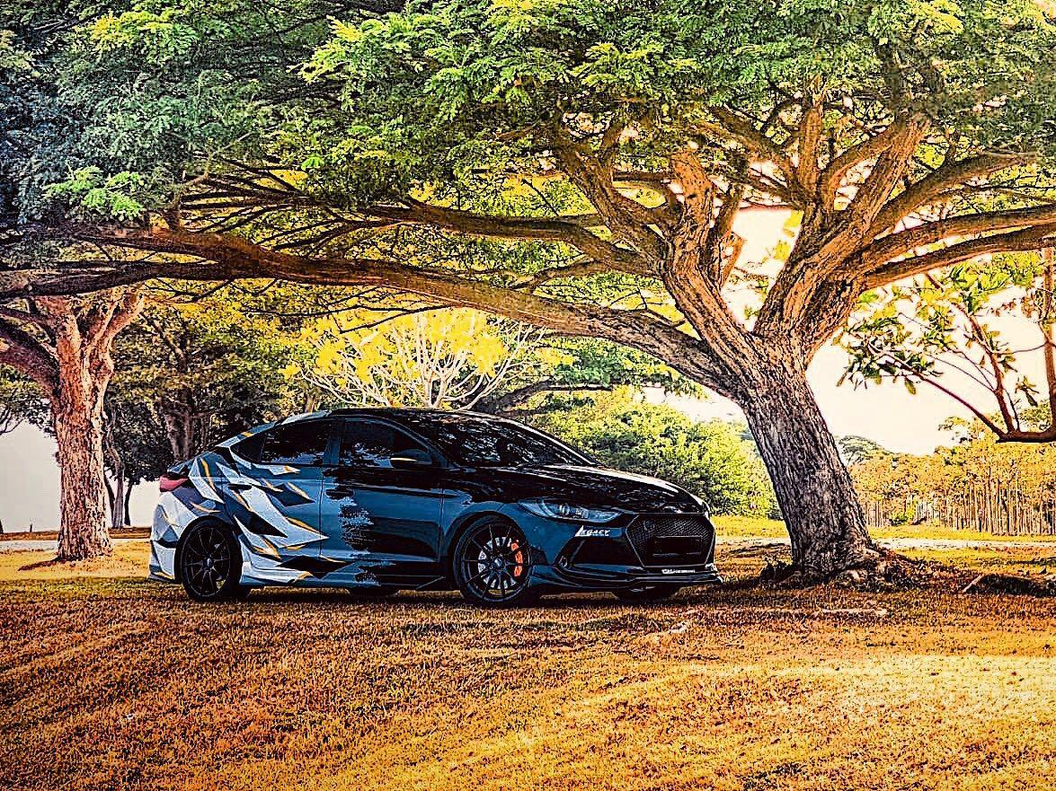Hyundai Elantra 1.6 GLS Elite (A)