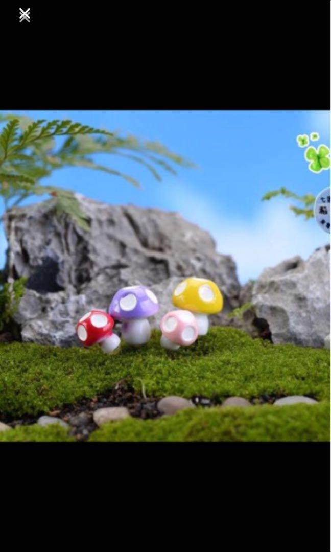 Sale Mini Clay Mushroom Terrarium Miniature Design Craft Others On Carousell
