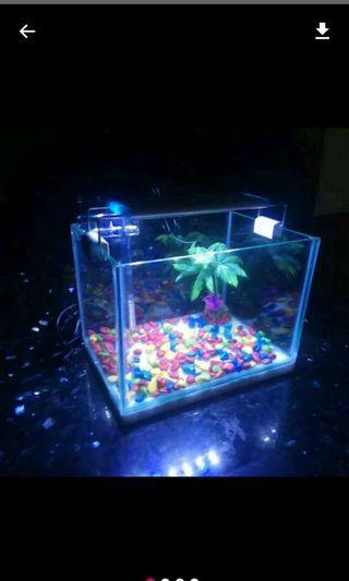 Aquarium mini fullset baru
