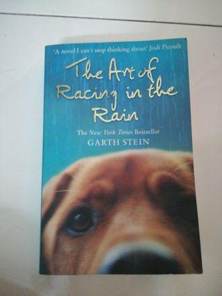 Books> the art of racing in the rain (reduced price)