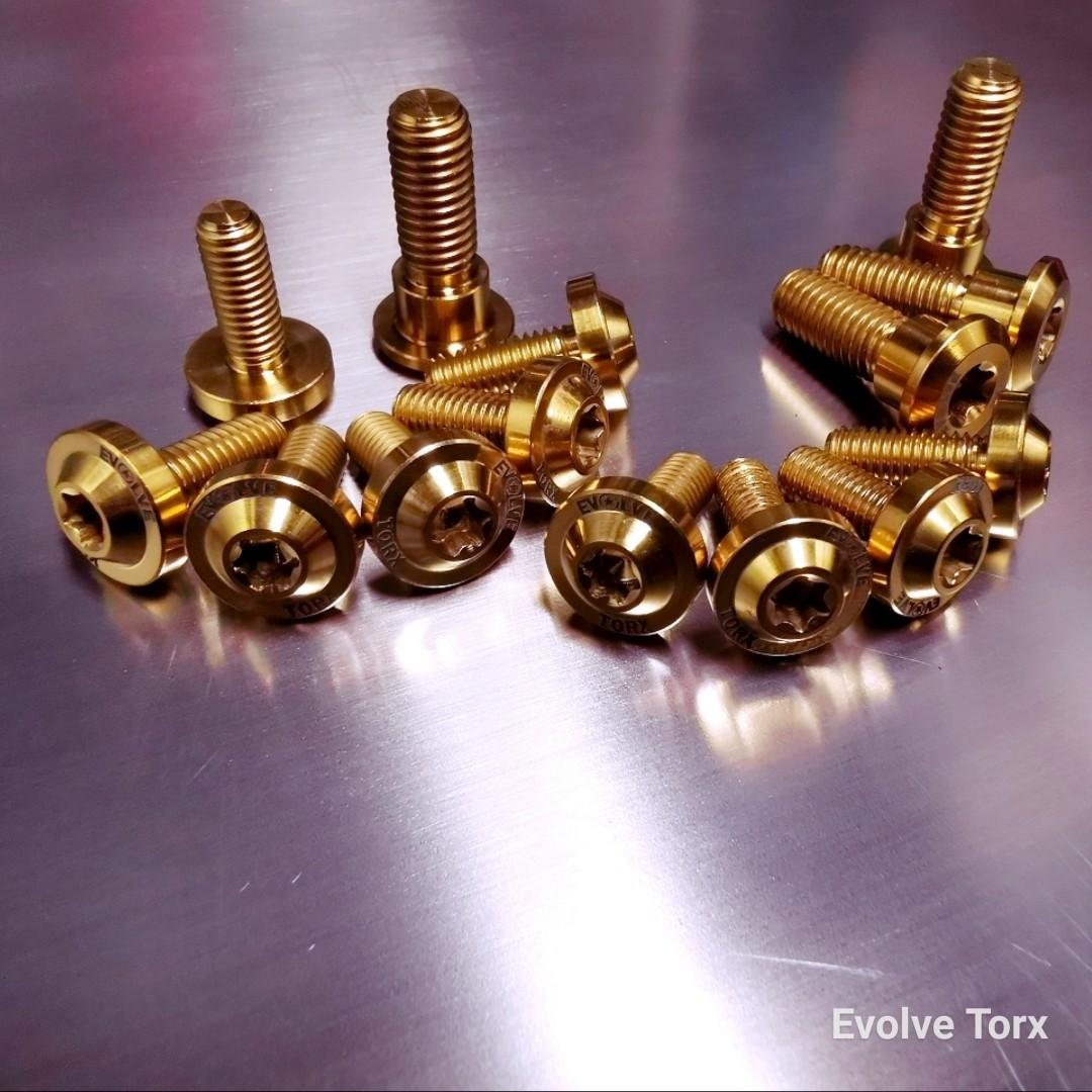 🔩 Titanium Torx Rotor/Brake Disc bolts for most Class 2 bikes.