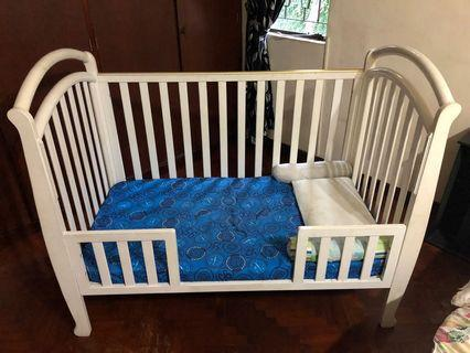 4-in-1 Cot/Bed