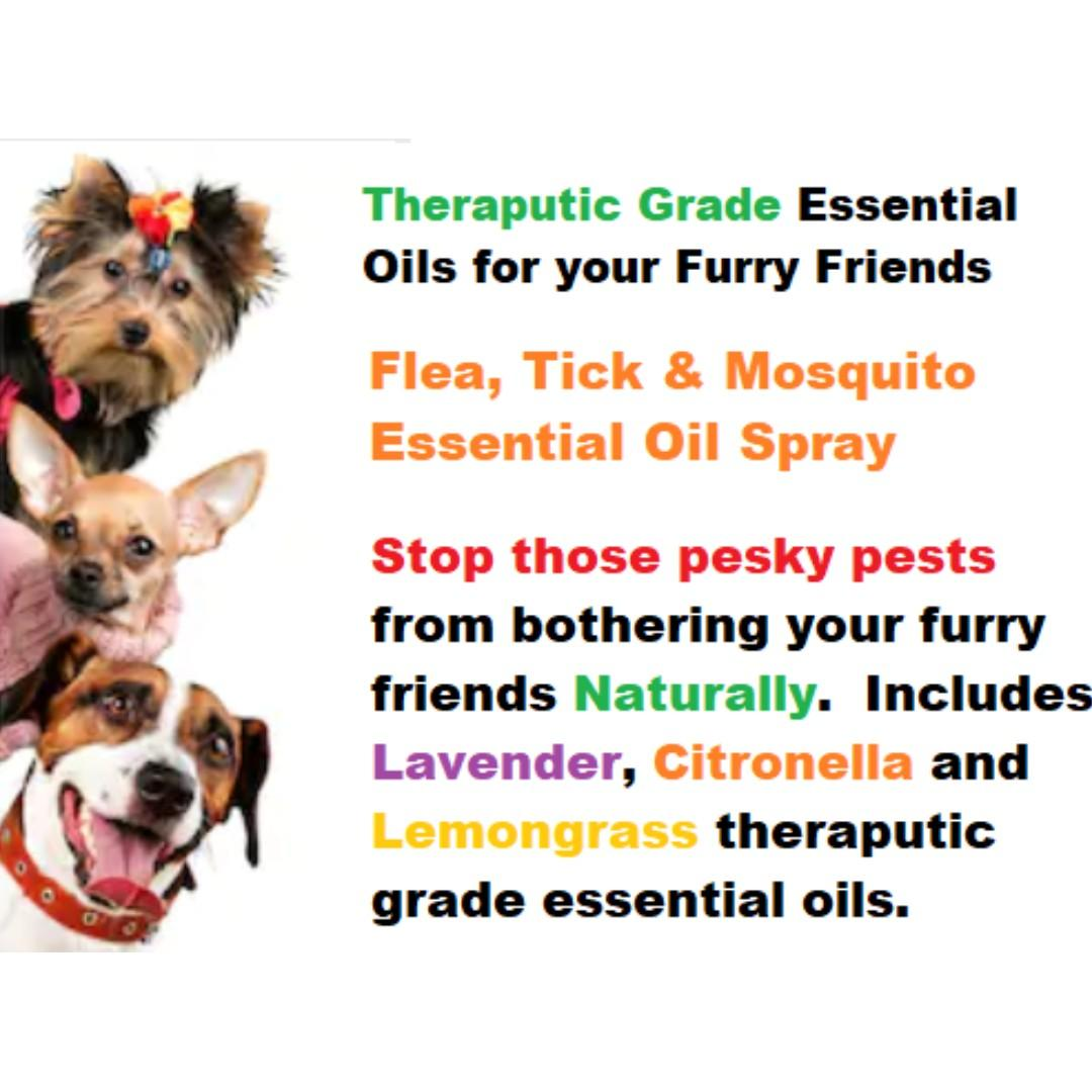 Your Dog S Natural Anti Flea Anti Tick Anti Mosquito Spray With Therapeutic Grade Essential Oils 60 Ml Pet Supplies For Dogs Health Grooming On Carousell