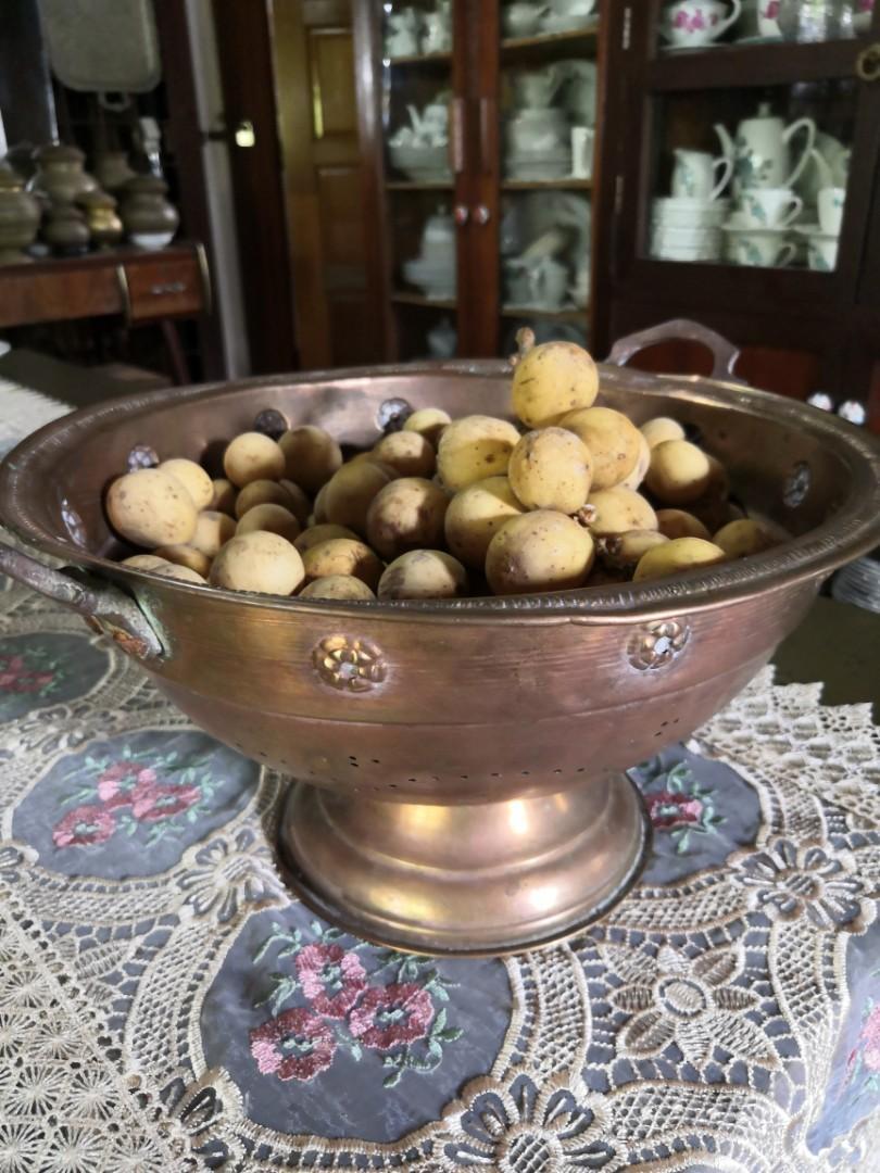 Bekas buah antik