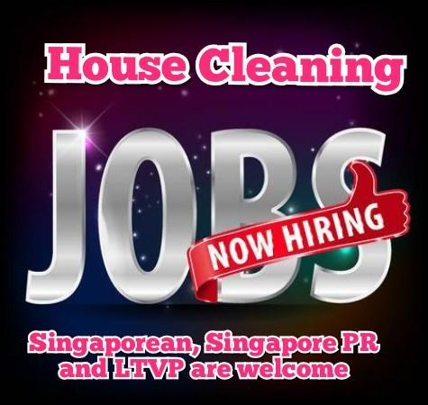 Full-time or Part-time HOUSE Cleaning Job