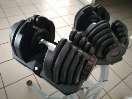 Bowflex original 80kg pair gym