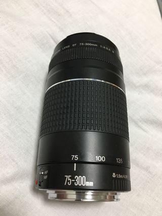 限時特價 Canon EF 75-300 打鳥小砲