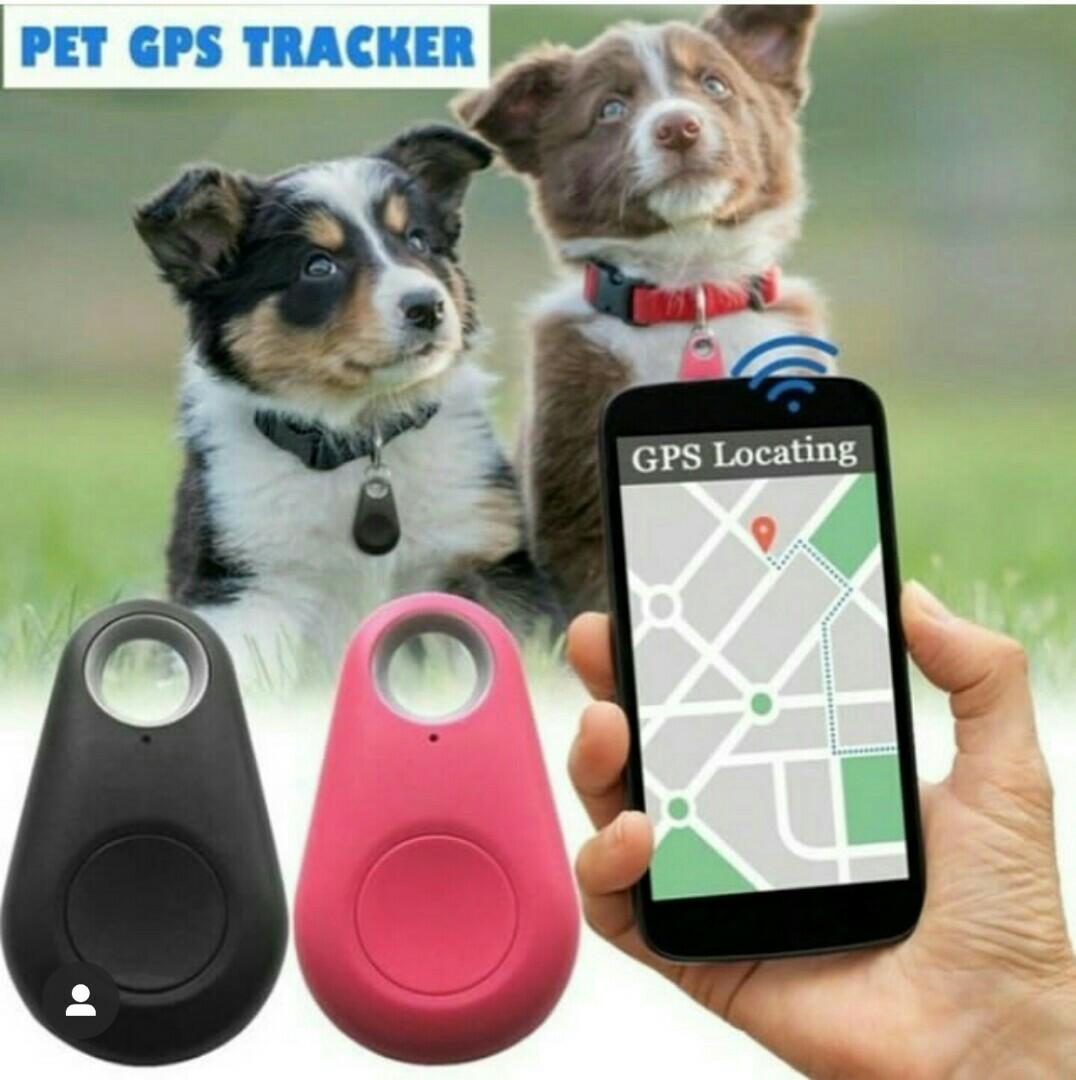 GARMIN ASTRO AND GPS TRACKING DEVICES FOR PET AVAILABLE