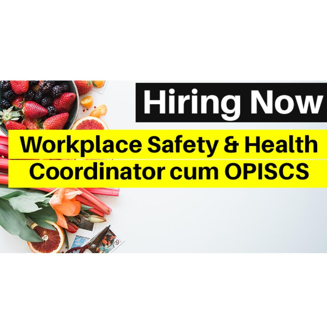 Workplace Safety & Health Coordinator cum OPISCS