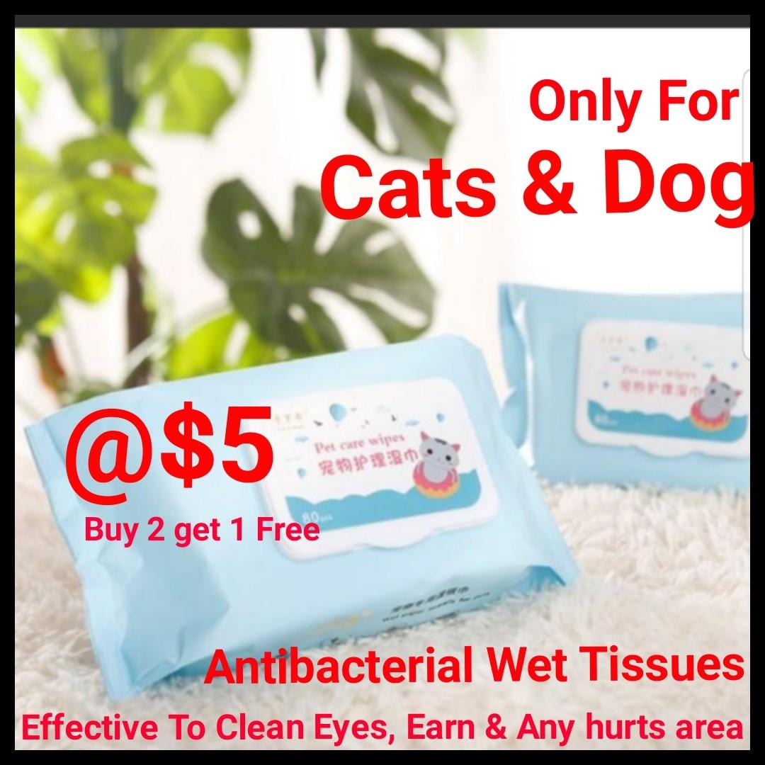 Cat Wet Tissue Antibacterial To Clean Any Injury Area, Clean Eyes or Tears or ears  , Clean Piku SPECIALIST FOR CAT USED or Kitten  BUY 2 GET 1 FREE @$5 EACH