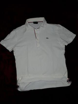 Polo shirt lacoste fred perry uniqlo zara adidas
