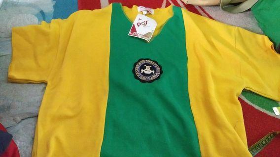 Pg's vintage shirt