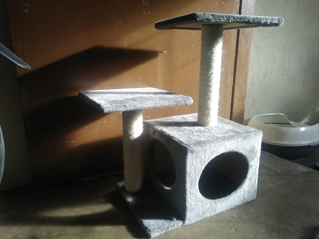 Cat litter House and Playhouse