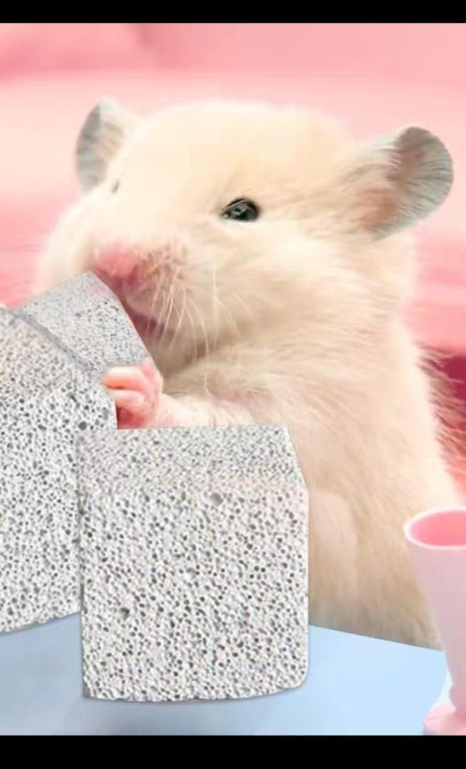 4.6x4.6 cm天然補鈣 磨牙石 倉鼠 火山岩 龍貓兔子荷蘭豬專用小寵用品