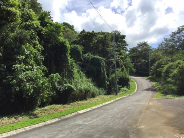 1102 sqm farm lot for sale in Forest Farms Havila Antipolo near Sumulo