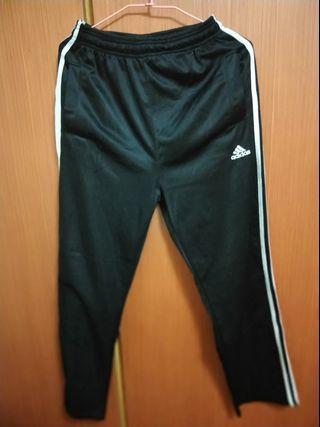 Adidas 男版 運動褲