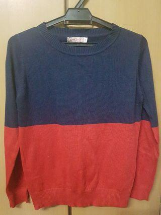 Applemint Sweatshirt #1010