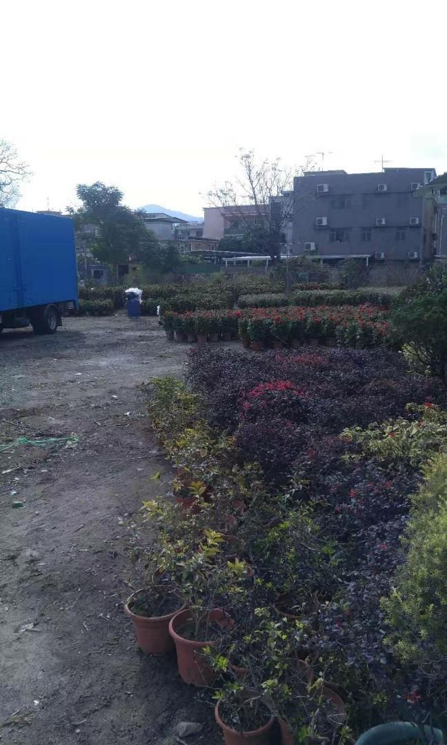 園藝花园用地