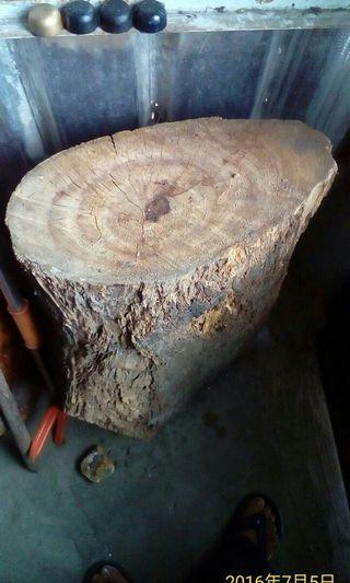 牛樟彫刻料