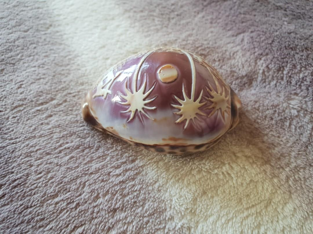 紫色海螺擺設(工藝品)7×5公分,2個169(可搭配海盜船)歐洲進口商品,手工雕刻着精美的海邊夜景,非常精緻漂亮,唯此一個唷