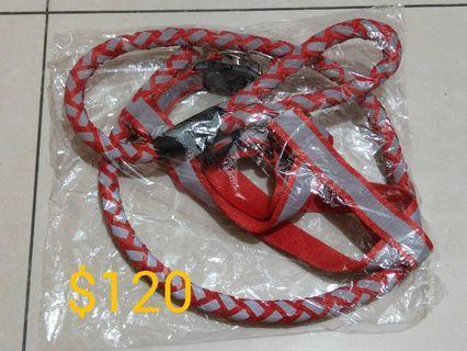 紅色反光L號胸背帶+牽引繩