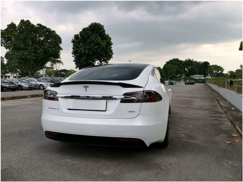 Tesla Model S 75D (Electric Car)