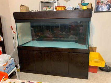 183cm Super big customize aquarium