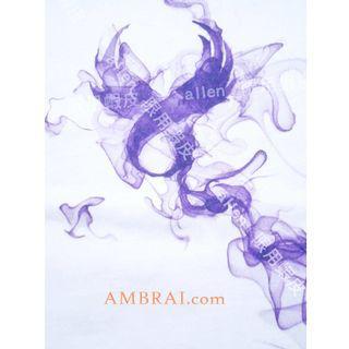 【AMBRAI.com】 紫氣東來 REMIX SPIRIT LOGO TEE 15週年 煙燻 復刻 短袖 厚T 短T