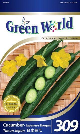 Green World 20 Seeds - Biji Benih Timun Jepun Cucumber-Japanese Shogun
