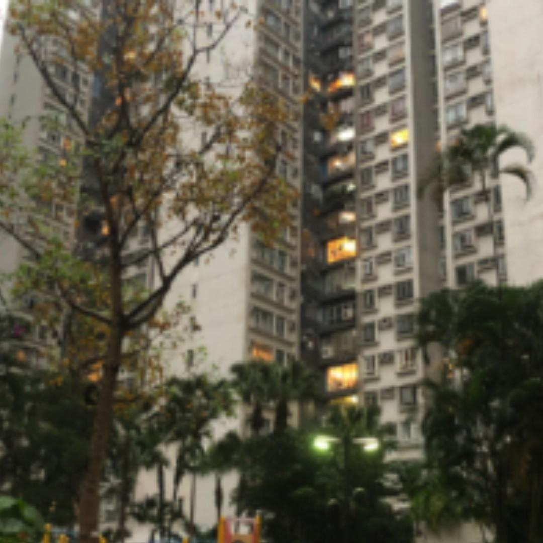 City Garden - high efficiency ratio