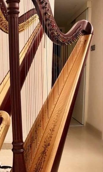 豎琴Harp